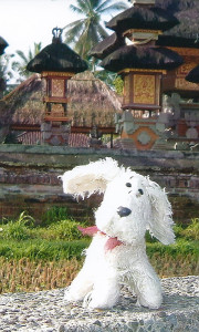 Chili-at-Balinese-Temple-2004_1